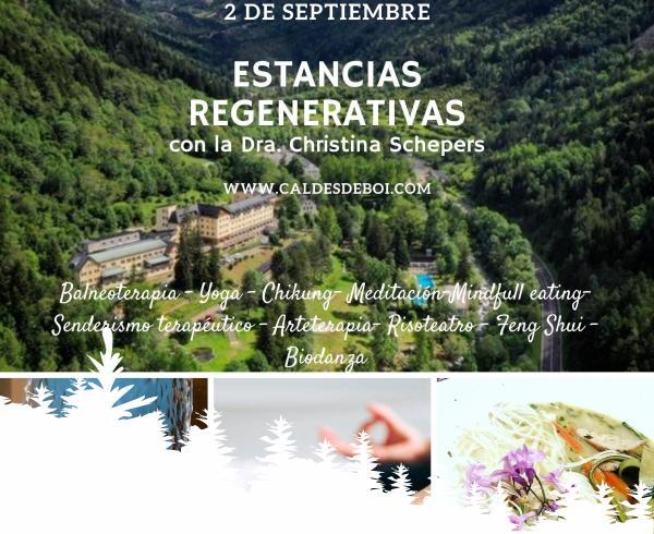 Hotel Manantial | Vall de Boí